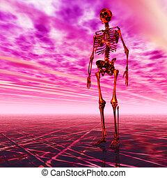 Digital Illustration of a Skeleton