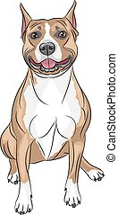 Vector American Staffordshire Terrier - Dog breed American...