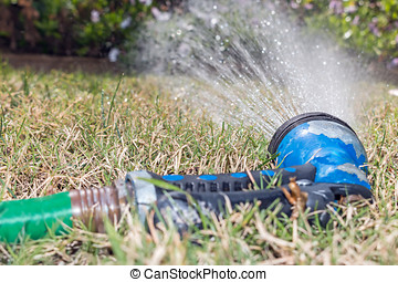 Old worn garden hose spray gun spraying water on green and...