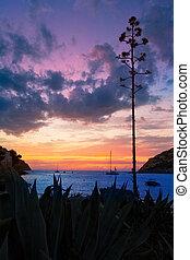 Mallorca port de Andratx sunset in Mallorca at Balearic...