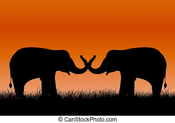 elephants silhouettes on sunset background