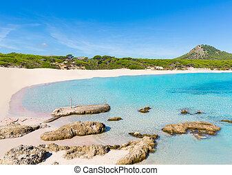 Majorca Cala Agulla beach in Capdepera Mallorca at Balearic...