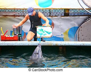 golfinho, tintas, quadro