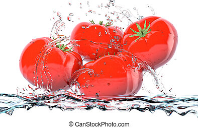 tomatoes - red tomatoes with water splashes, concept of...