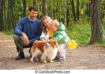 família, Menino, cão, outonal, madeira