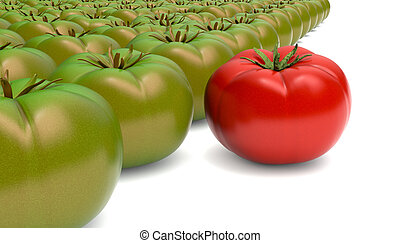 tomatoes - red and green tomatoes on white background (3d...