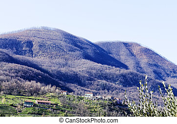 apuan alps - view of apuan alps in tuscany in summer time