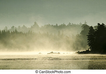 Morning mist burning off a pond in Maine
