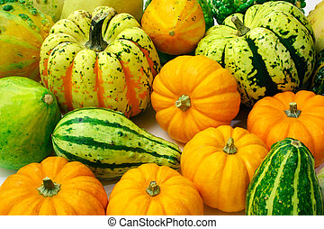 Squash Arrangement - This is an arrangement of several...