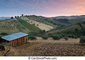 Early Morning Abruzzo - Abruzzo, Italy