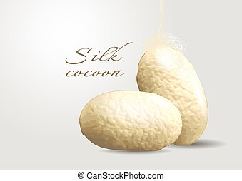 silk cocoon. two cocoon on gray background