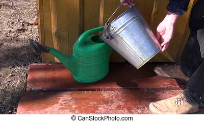 gardener pour water in can - gardener in farm pour water in...