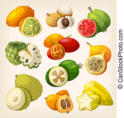 Exotic Tropical Fruit. - Exotic tropical fruit. Icons for...