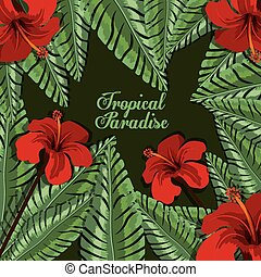 Tropical flowers design over green background, vector...