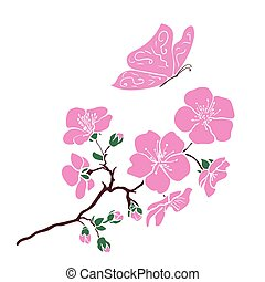 twig sakura blossoms and pink butterfly. Vector illustration