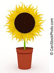 Sunflower in pot - Illustration of a single Sunflower in a...
