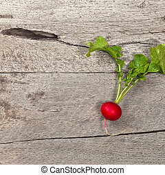 Radishes - Fresh radishes on old wooden background Selective...