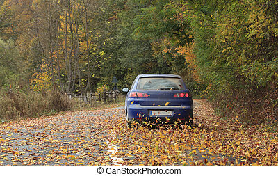 Autumn drive - Image of a car on a rural autumn road full of...