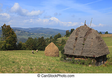 Transylvanian Landscape - Landscape in an isolated...