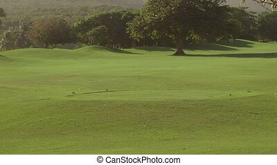 Golf course tropical island sports
