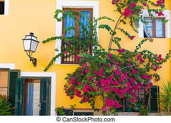 Palma de Mallorca mediterranean facades and flowers in...