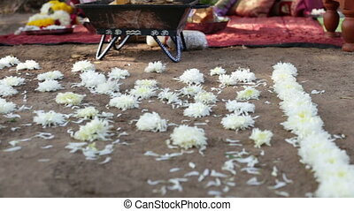 flower path in front of indian bridal altar - white flower...