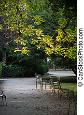 Morning  in the Gardens of Luxembourg, Paris