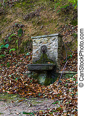 fountain in the wood - fountain in the middel of the wood -...