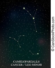 Camelopardalls and Cancer, Leo Minor constellation