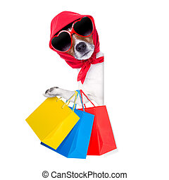 shopping diva dog - jack russell diva dog with a bunch of...