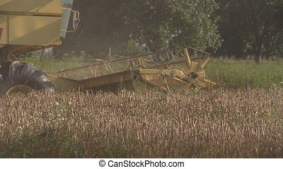 combine work grain field - yellow country harvester combine...