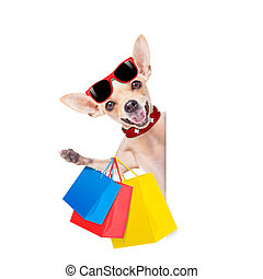 shopping dog - chihuahua dog with a bunch of shopping bags...