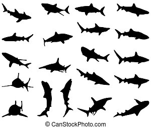 sharks - Black silhouette of sharks, vector illustration
