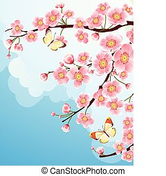 sakura - Vector illustration - cherry blossom