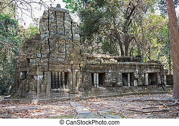 khmer building in the jungle on Ta Prohm site