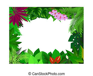 Forest frame background