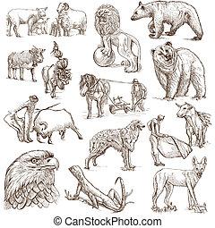 Animals around the World - Animals around the world -...