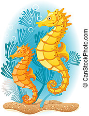 Seahorse - Vector illustration - Two seahorses on the seabed...