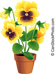 pansy - Vector illustration - Pansies in a terracotta pot