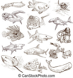 Underwater 1 - From series: Underwater and Marine life set...