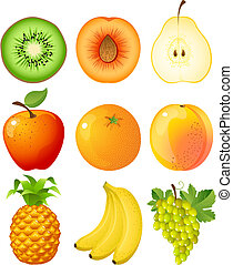 fruit - Vector illustration - set of fruits