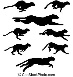 wildcats set - Set of different wildcats running silhouettes...