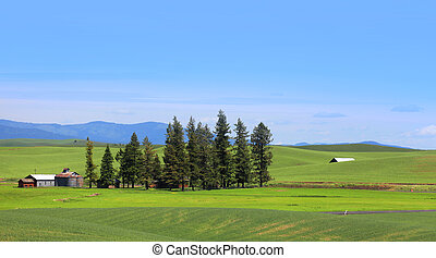 Farm landscape - Beautiful farm landscape in South east...