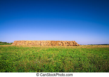 hay-roll on meadow nature background