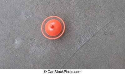 The Teetotum - A small spinning top spun with the fingers on...