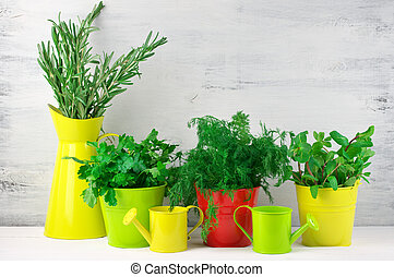 Flavoring greens in buckets - Bunches of flavoring greens in...