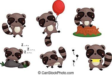 Raccoon Vector Set