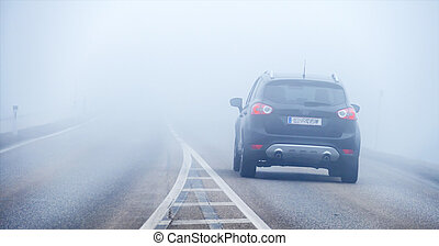 car in the mist