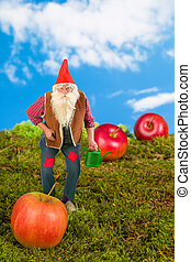 Garden gnome with watering can - Funny garden gnome holding...