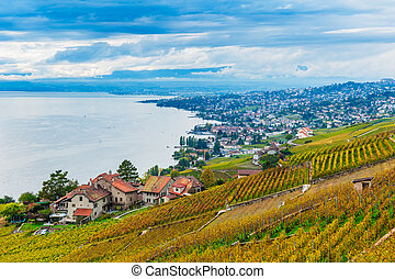 Beautiful view on Lavaux vineyards and the lake Geneva,...